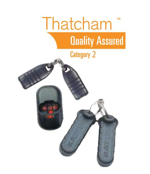 Thatcham Category 2